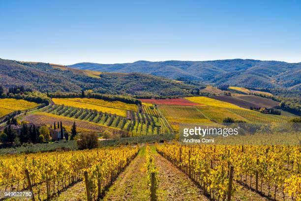 radda in chianti, siena province, tuscany - chianti region stock photos and pictures