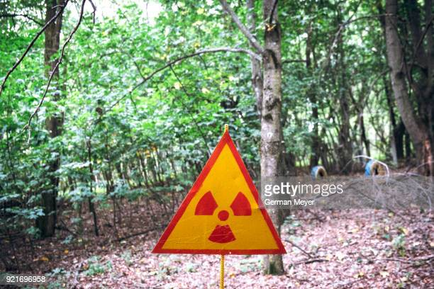 radiation warning in chernobyl forest - chernobyl stockfoto's en -beelden