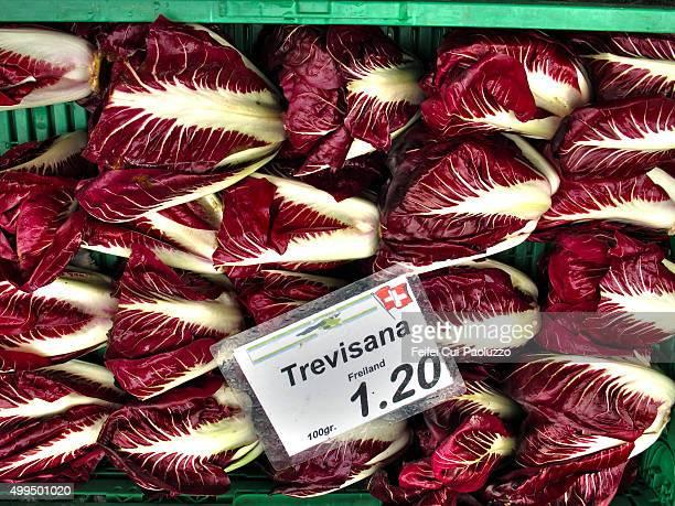 Radicchio Vegetable market at Bern Switzerland