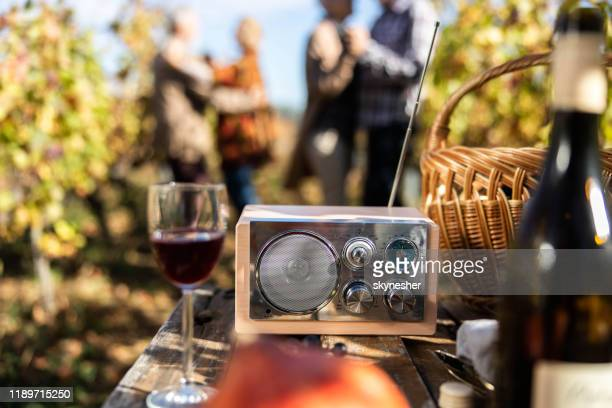 radio muziek op een picknick in de wijngaard! - radio stockfoto's en -beelden