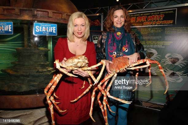 Radio personality Gerlinde Jaenicke and actress Alexandra Kamp welcome the newly arrived Spidercrabs at Aqua Dome Sealife Berlin on March 27 2012 in...