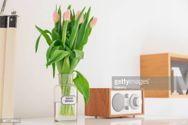 Radio, rolled world map and glass vase with tulips standing on refrigerator in the kitchen.