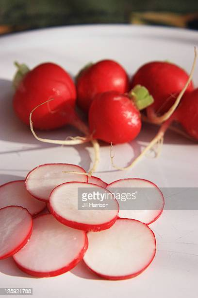 radishes - jill harrison stock pictures, royalty-free photos & images
