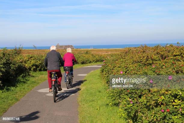 Radweg bei Kampen Urlaub auf der Nordsee Insel Insel Sylt im Herbst