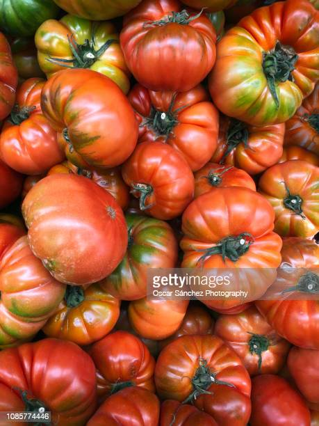 raf tomato almería, spain - raf stock pictures, royalty-free photos & images