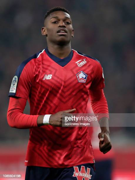 Rafael Alexandre Da Conceicao Leao of Lille during the French League 1 match between Lille v Amiens SC at the Stade Pierre Mauroy on January 18 2019...