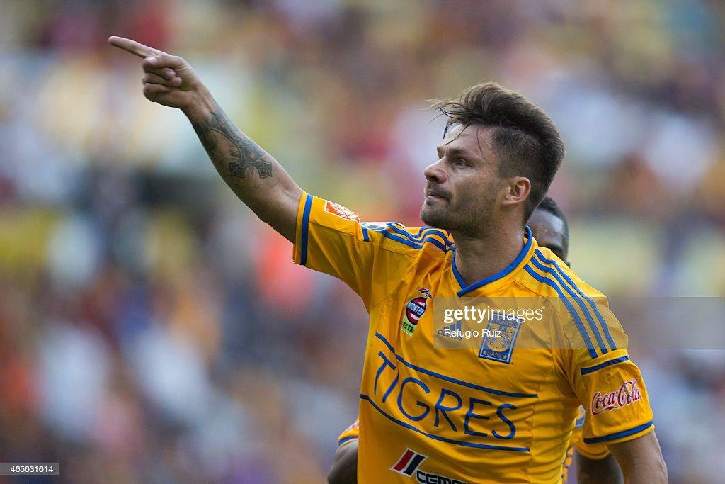 Leones Negros v Tigres UANL - Clausura 2015 Liga MX