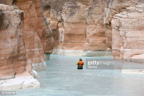 A rafter in Havasu Creek Grand Canyon National Park Arizona United States