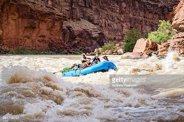 rafters approach house rock rapid, colorado river - whitewater rafting stock pictures, royalty-free photos & images