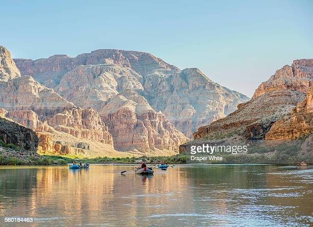 rafters floating down the grand canyon. - colorado river stock pictures, royalty-free photos & images