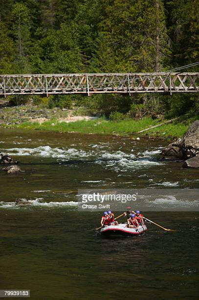 rafters gliding down lochsa river - swift river stock pictures, royalty-free photos & images