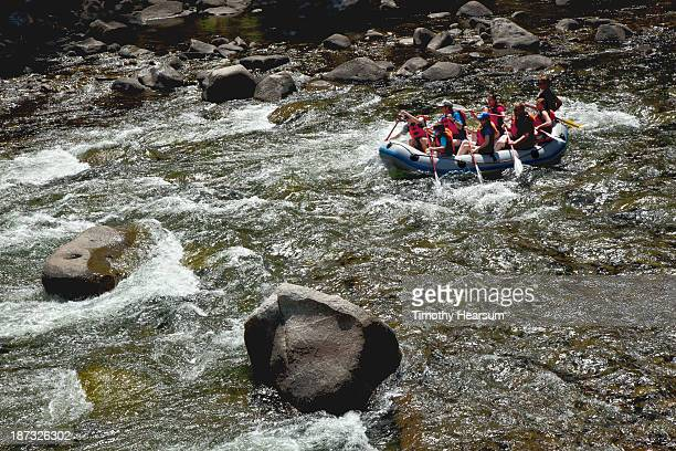 rafters maneuver thru rapids on the salmon river - timothy hearsum stock pictures, royalty-free photos & images