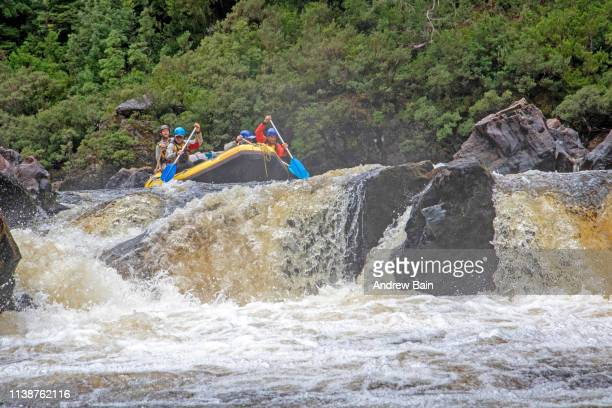 rafting a rapid in propsting gorge on the franklin river - swift river stock photos and pictures