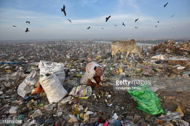 A rag picker collects usable items from a pile of waste at Bhalswa Landfill site on March 27 2019 in New Delhi India