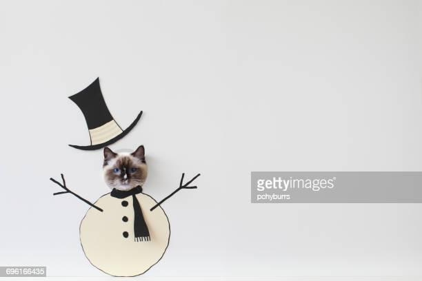 Ragdoll cat peeking through snowman face cut-out board