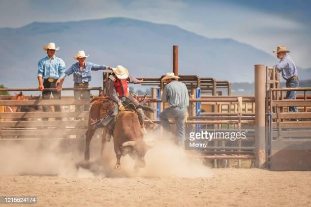 raging bull cowboy american bareback bull riding rodeo arena - spanish fork utah stock pictures, royalty-free photos & images