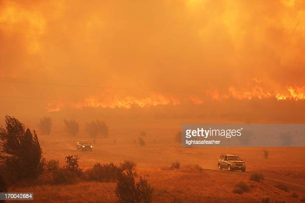 raging wildfire - wildfire stock photos and pictures