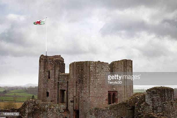 raglan castle main tower with welsh flag - welsh flag stock pictures, royalty-free photos & images
