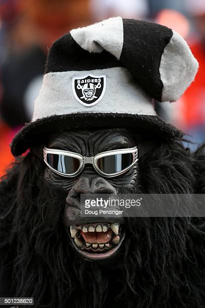 Raiders fan dressed in a gorilla costume shows his support before a game against the Denver Broncos at Sports Authority Field at Mile High on...