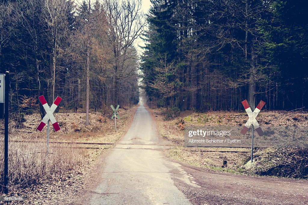 Railroad Crossing Against Trees At Forest : Stock-Foto