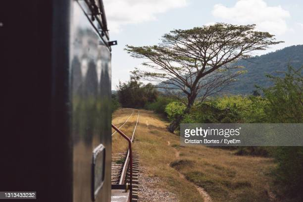 railroad track amidst trees against sky - bortes stock pictures, royalty-free photos & images