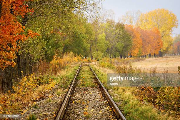 Railroad track curve around the bend and out of sight through trees with beautiful fall foliage.