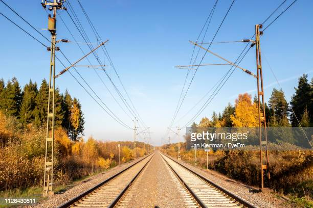 railroad tracks amidst tree against clear blue sky - rail transportation stock pictures, royalty-free photos & images