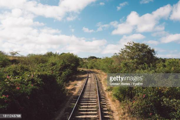 railroad tracks amidst trees against sky - bortes stock pictures, royalty-free photos & images