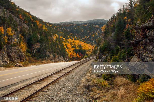 Railroad tracks and road between mountains