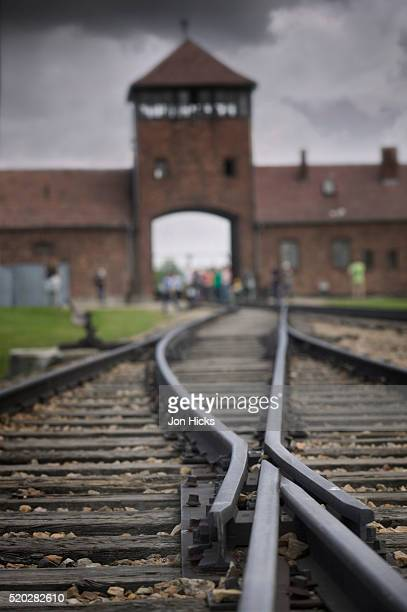 railroad tracks leading into kl auschwitz ii - auschwitz concentration camp stock pictures, royalty-free photos & images