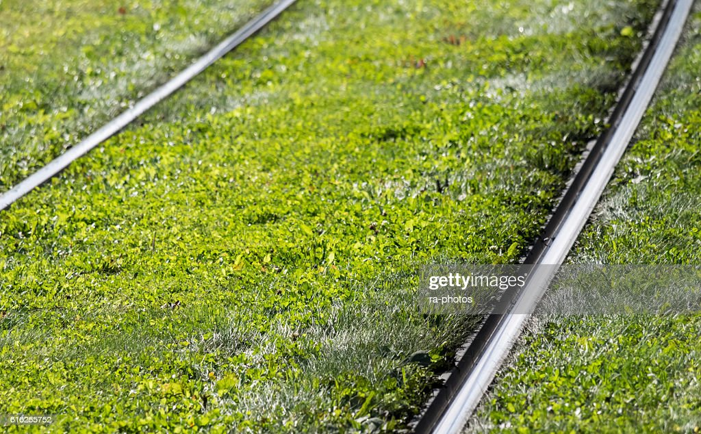 La vía férrea  : Foto de stock