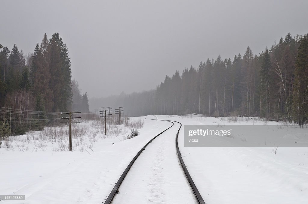 Railway in the misty forest : Stock Photo