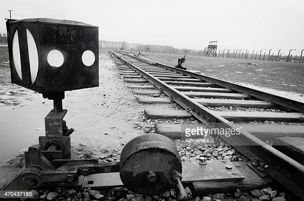 railway line arriving into camp auschwitz ii; birkenau in poland - auschwitz stock pictures, royalty-free photos & images