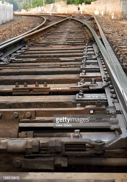 railway - meiosis stock pictures, royalty-free photos & images