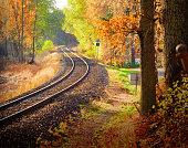 Railway through fall woods