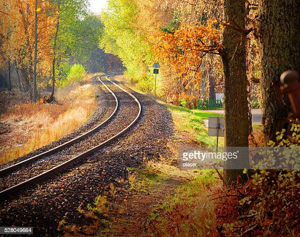 Railway through fall woods