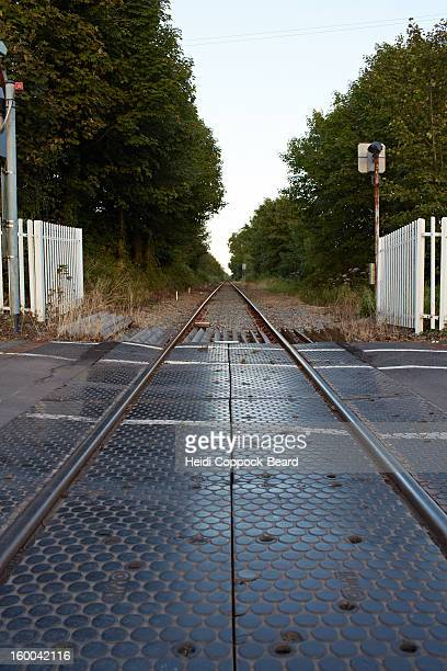 railway track - heidi coppock beard stock pictures, royalty-free photos & images