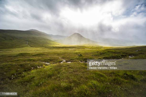 rain and light rays - scotch whiskey stock pictures, royalty-free photos & images