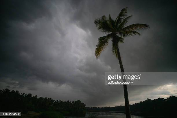 rain clouds  during monsoon season kerala india - monsoon stock pictures, royalty-free photos & images
