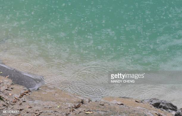 Rain drops fall in the Nanshin Creek near the Louhao Dam at Neidong National Forest Recreation Area in Wulai township New Taipei City on April 30...