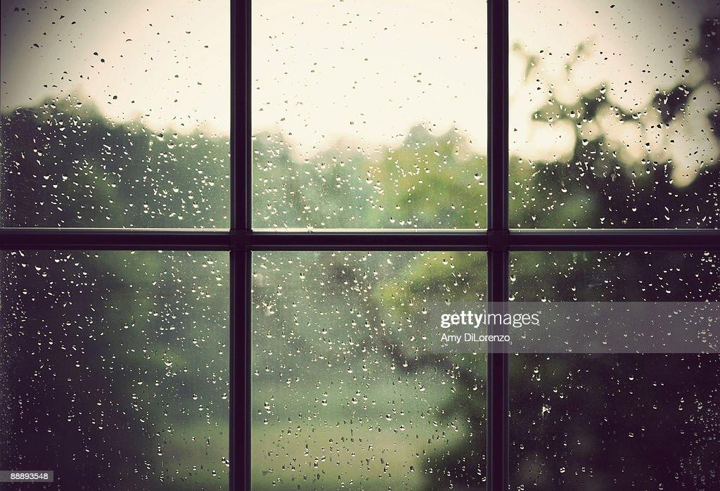 Rain drops on window : Stock Photo