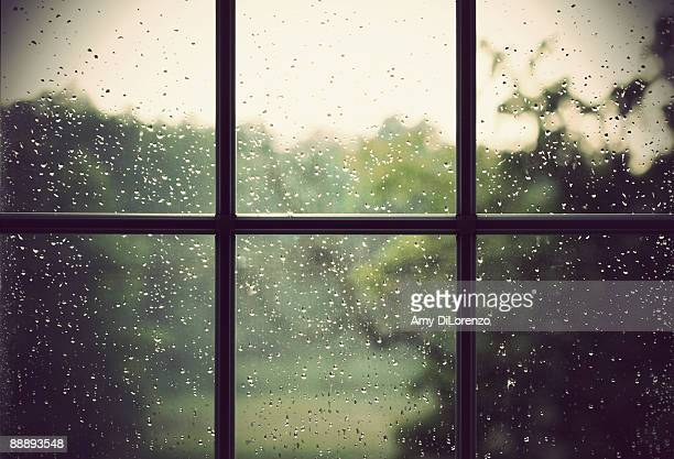 rain drops on window - rain stock pictures, royalty-free photos & images