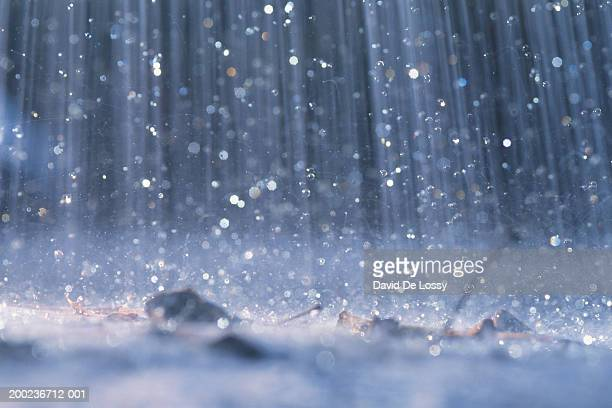 Rain falling on ground