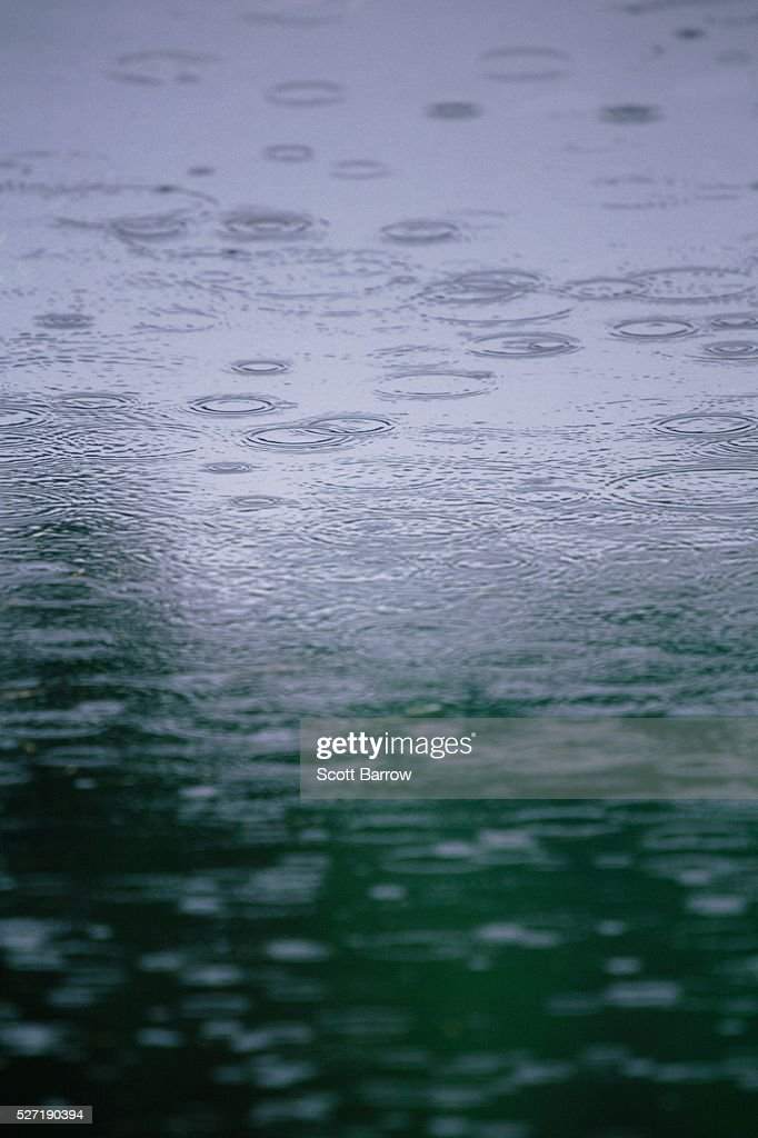 Rain falling on water : Stock Photo
