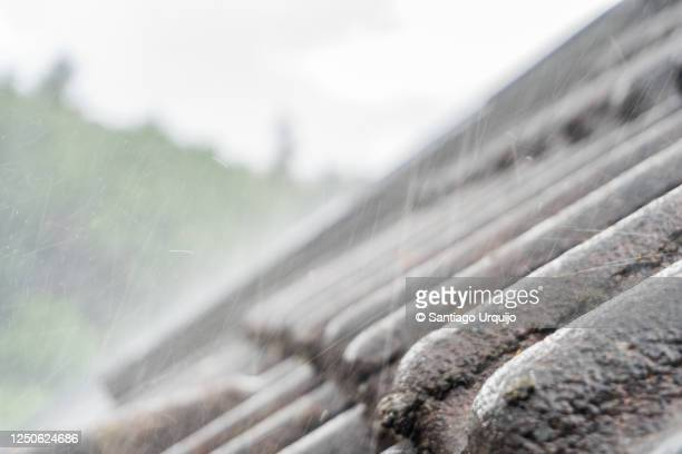rain hitting a roof - capital region stock pictures, royalty-free photos & images
