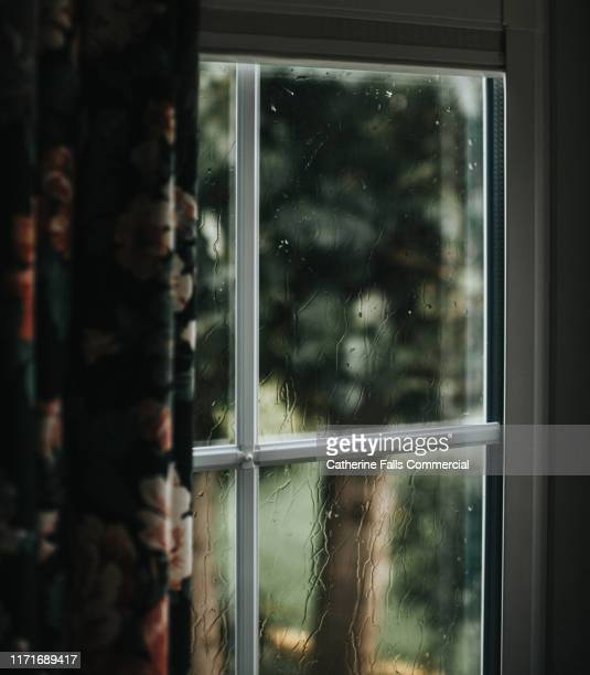 rain on a window - cabin fever stock photos and pictures