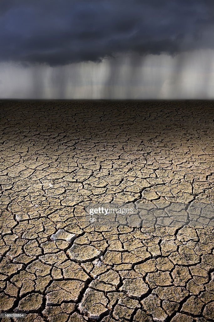 Rain on Parched, Cracked Ground : Stock Photo