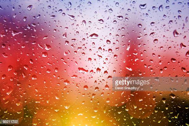 rain on window - crausby stock pictures, royalty-free photos & images