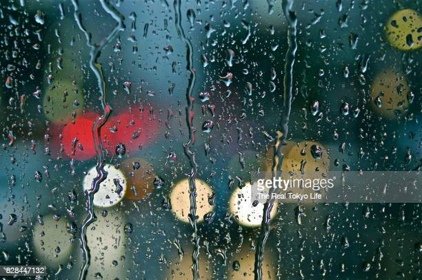 rain - rain stock pictures, royalty-free photos & images
