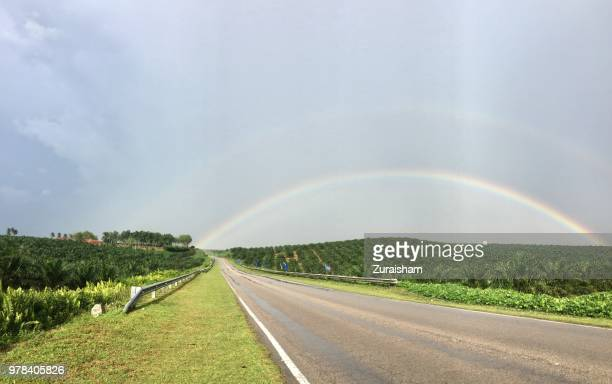 Rainbow above the palm plantation in Malaysia